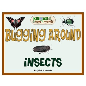 Bugging Around Insects - An Insect unit study for schools and homeschool - Insect workbook
